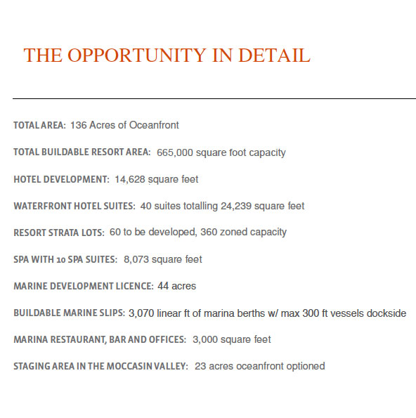 Opportunity details